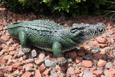 New alligator crocodile reptile yard pond pool garden for Alligator yard decoration