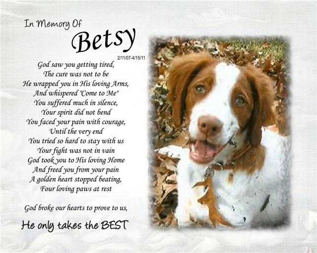 Personalized Pet Memorial He Only Takes The Best Poem and Your Pet Photo Dog Cat