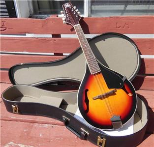 how to buy a mandolin for a beginner