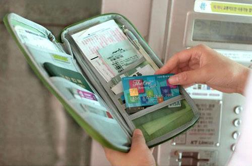 travel passport credit card cash coin document organizer wallet purse bag holder ebay. Black Bedroom Furniture Sets. Home Design Ideas