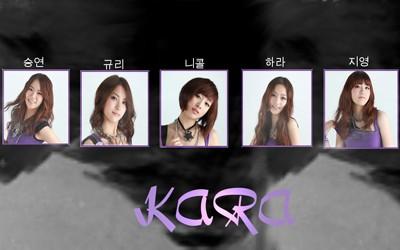 KARA Lupin Kpop Laptop Netbook Sticker Skin Decal Cover