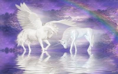Unicorn Fantasy Laptop Netbook Skin Cover Sticker