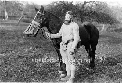 photo ww1 soldier amp horse demonstrating gas masks ebay
