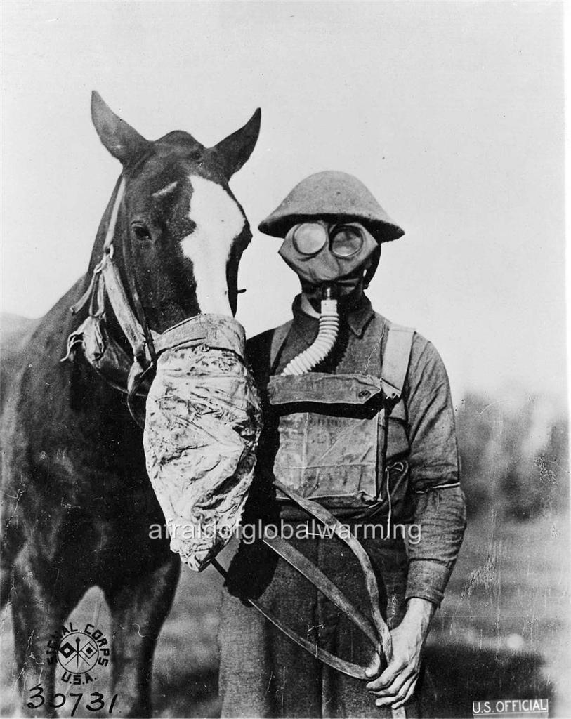 world war one gas mask horse photo world war 1 soldier