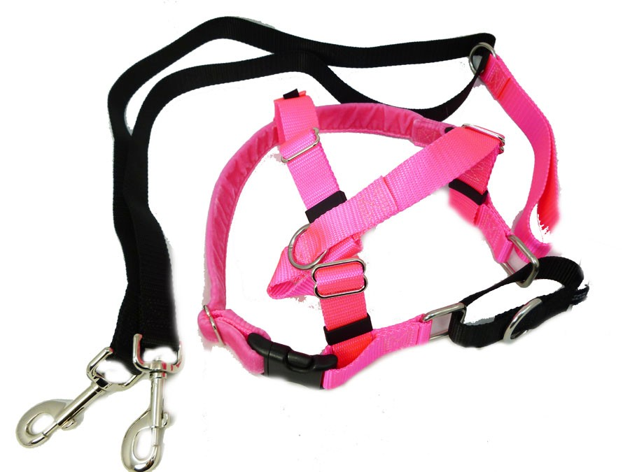 Freedom Velvet Lined No Pull Designer Harness And Leash