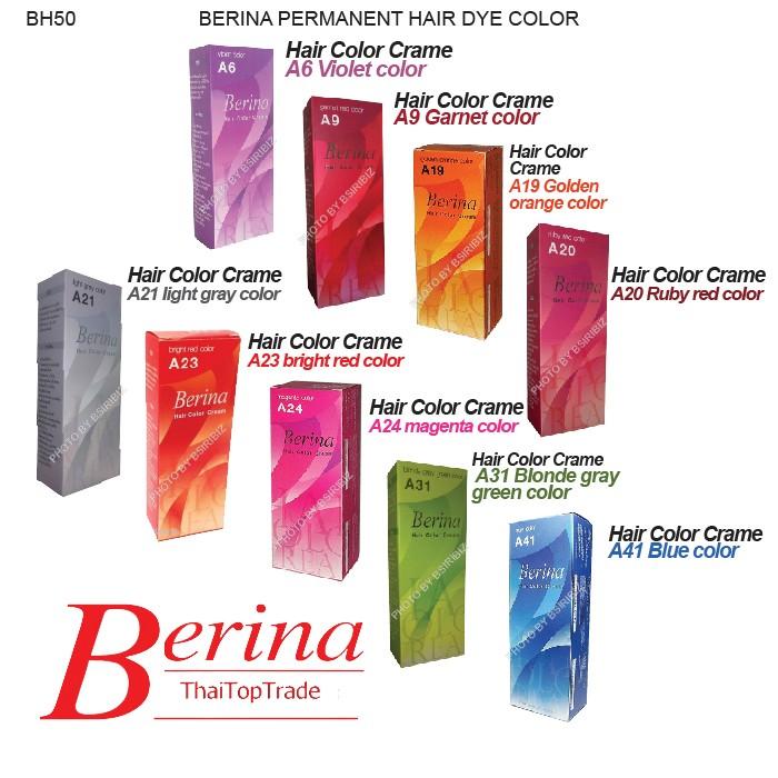 Berina Permanent Hair Dye Various Color Colour Cream Punky Punk Cool