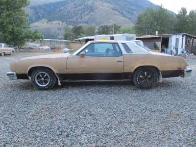 Rain gutter trims set 1973 1977 cutlass supreme salon for 1973 oldsmobile cutlass salon