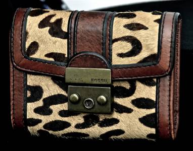 coach designer purses  coach or any brand