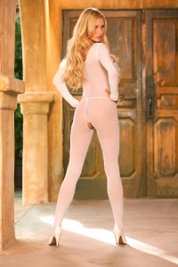 Opaque Long Sleeve Body Stocking Crotchless Bodysuit