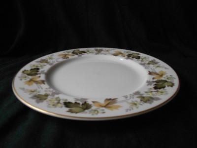 about royal doulton larchmont tc1019 set of 6 dinner plates 10 5
