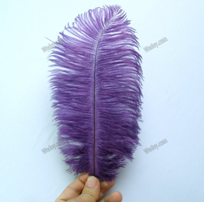10pc-Ostrich-Feathers-8-10-Assorted-Colors-White-Black-Purple-Fuchsia