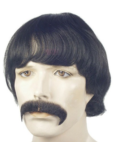 Sonny And Cher Wigs Or Costumes 66