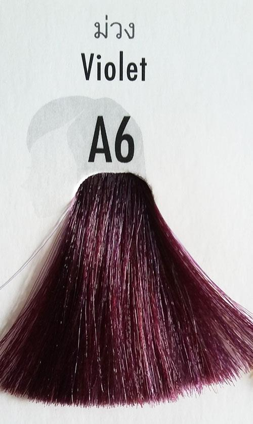 Berina Permanent Color Hair Dye Cream Violet # A6 Free Shipping!! 847847192 o