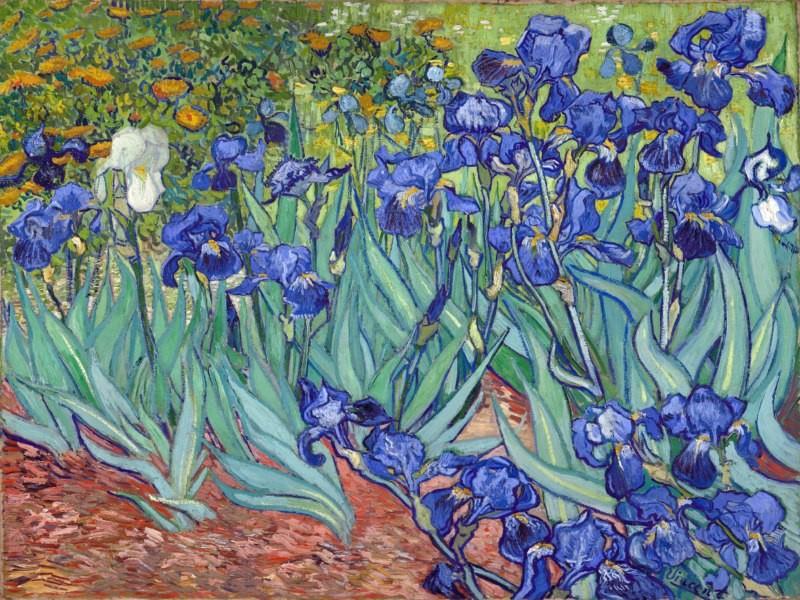 reproduction peinture sur toile van gogh les iris dans un. Black Bedroom Furniture Sets. Home Design Ideas
