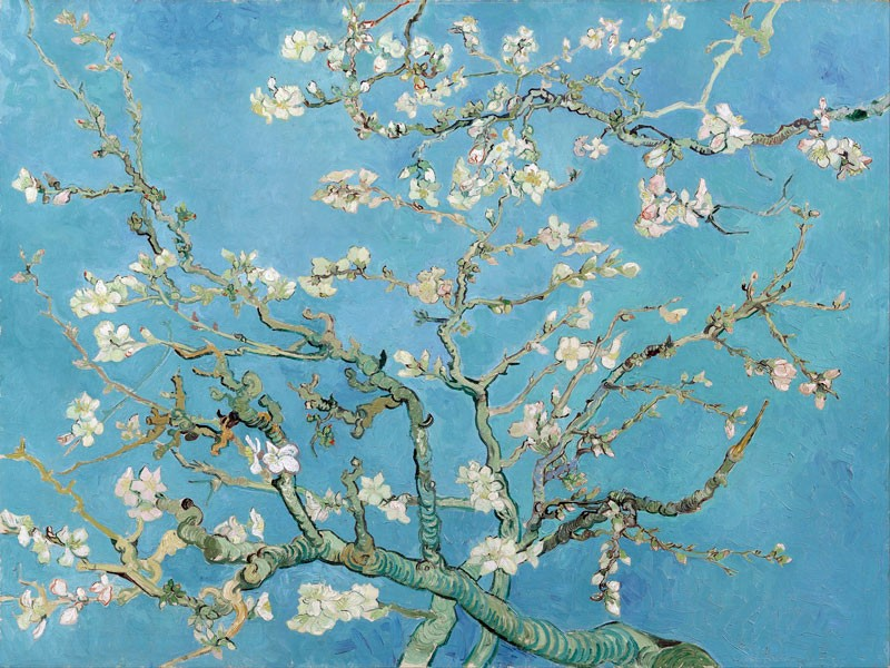 reproduction peinture sur toile van gogh branche d 39 amandier en fleurs neuf ebay. Black Bedroom Furniture Sets. Home Design Ideas