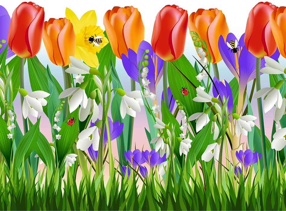 tulip border wall stickers - photo #26