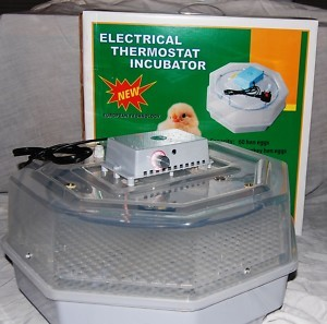 60-Egg-Manual-Turn-Janoel-Incubator-with-Thermometer-Candling-Torch