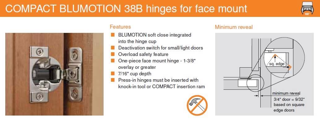 Fantastic Blum Face Frame Hinges Motif - Custom Picture Frame Ideas ...