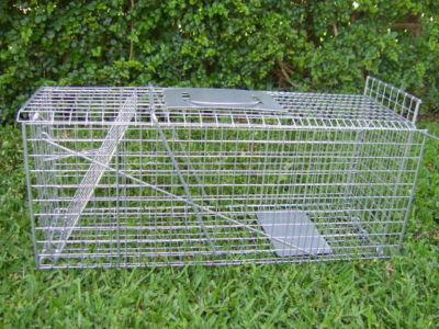 3-x-TRAPS-Humane-possum-cat-rat-rabbit-bird-animal-cage-live-quality