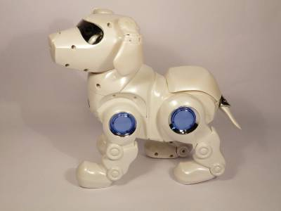 teksta robotic puppy instructions