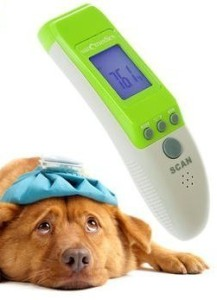 Can I Use Ear Thermometer On Dog