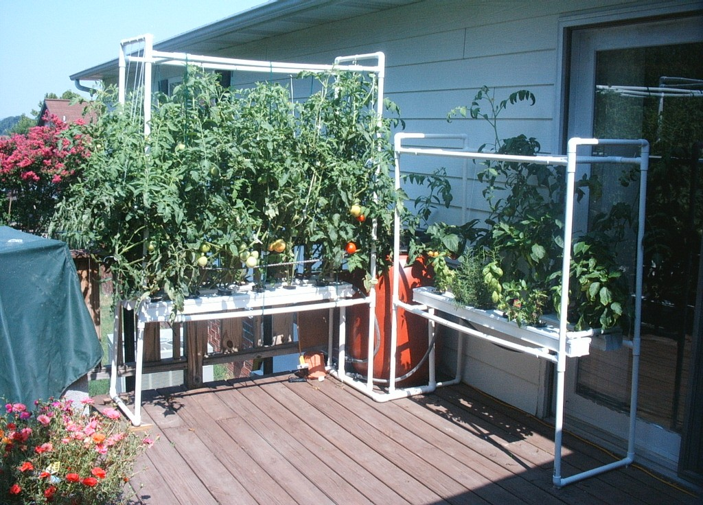 DIY HYDROPONICS AQUAPONIC SYSTEMS HOW TO PLANS Gardening