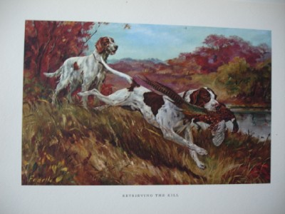 Vintage Series Prints English Setter Dogs Hunting Pheasants by