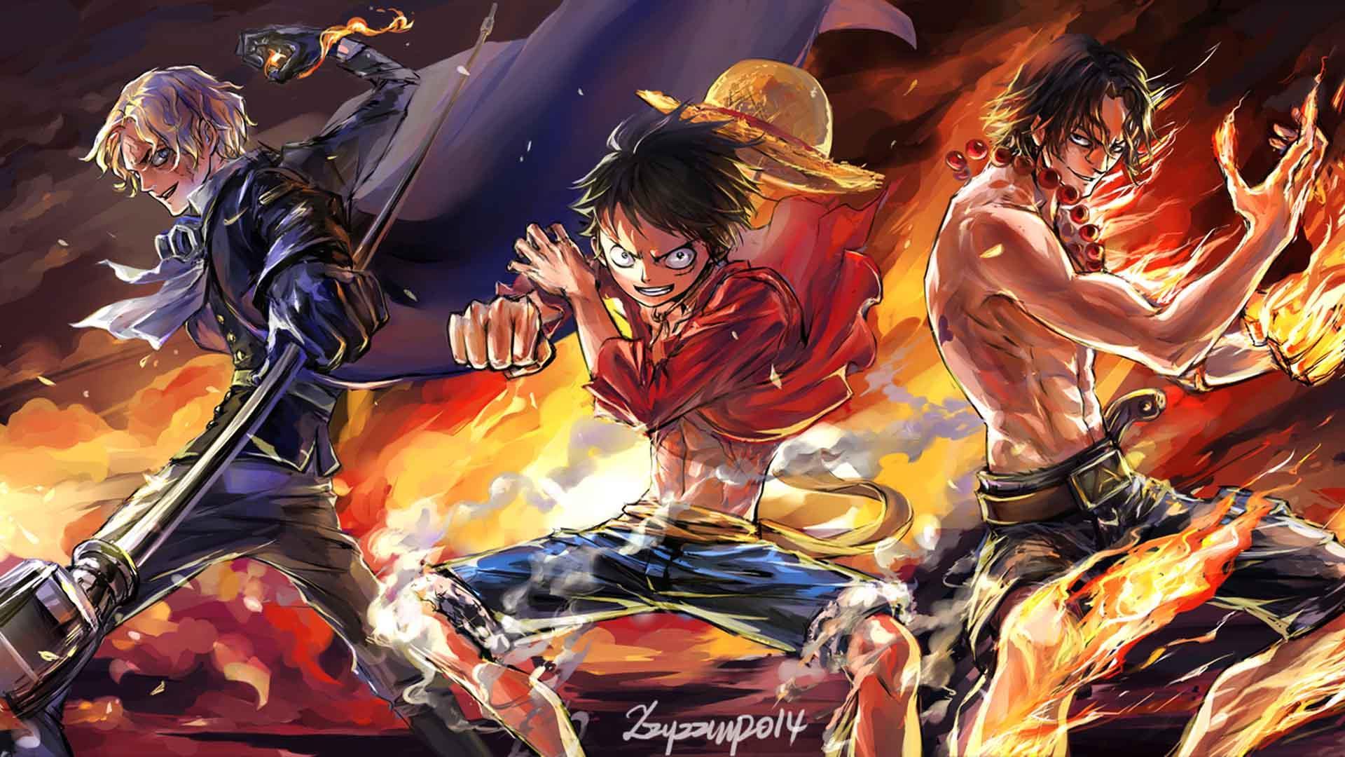 One Piece OP Monkey D Luffy Fighting Hot