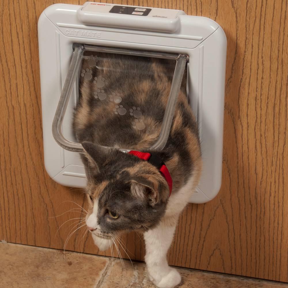 kitty litter pans