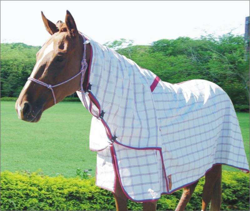 Capriole Ripstop Cotton Rose & Aqua Check Summer Horse