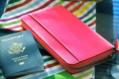 Nwt Kate Spade Wlru1154 Wellesley Zip Travel Wallet Fiesta