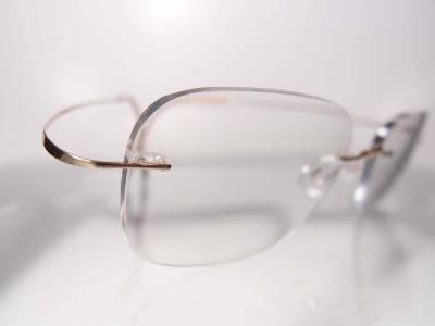 Rimless Screwless Eyeglass Frames : Silhouette 7395 Gold Rimless Titanium Minimalist Art ...