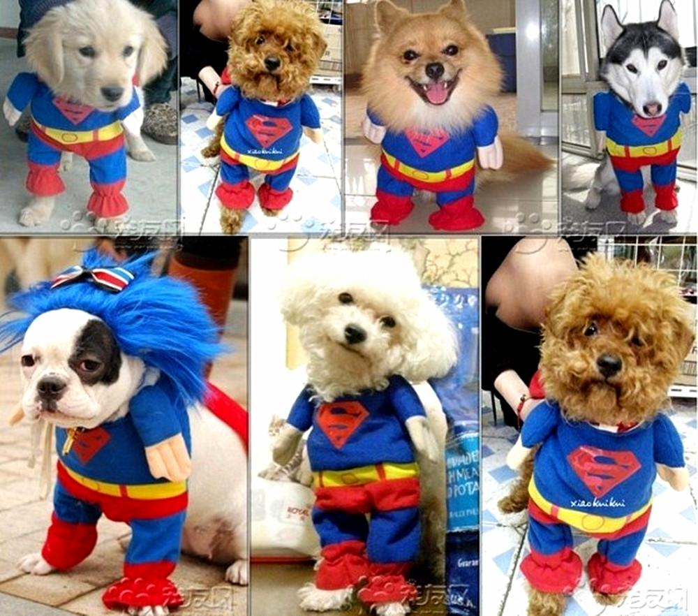 Pet-Dog-Clothes-Costumes-Superman-Suit-size-XS-S-M-L-XL