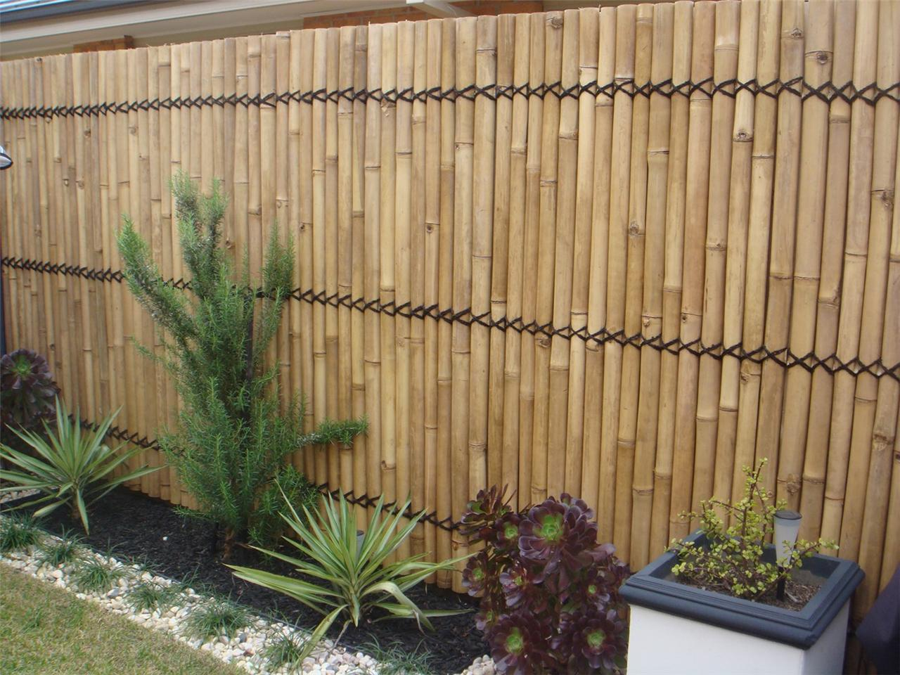Bamboo fence Outdoor Areas Pinterest Bamboo fence