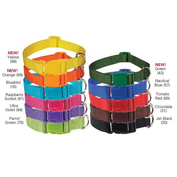 Zack-Zoey-Nylon-Dyed-Dog-Collar-18-26-NEW-COLORS