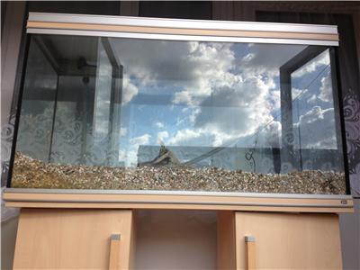 Lovely rena 270l aquarium with stand filter heater etc 4 for Aquarium rena