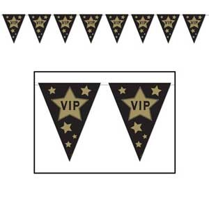 Hollywood-Oscars-Movie-Awards-Night-Theme-Party-Decorations-VIP-Banner-Bunting