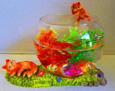 Small glass betta siamese fighter bowl flower vase free for Betta fish vase