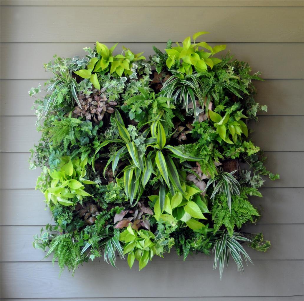 2 X 4 Pocket Outdoor Vertical Garden Hanging Planter Wall