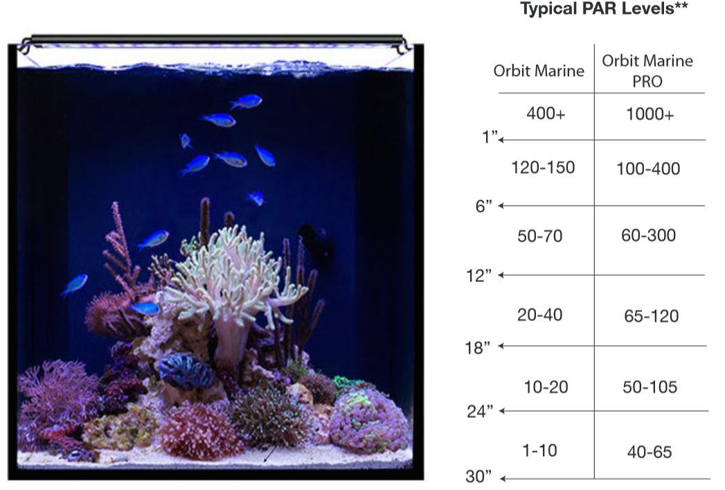 current usa orbit marine pro led 72 inch saltwater aquarium reef
