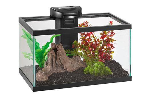 Elive aquaduo 10 gallon led aquarium kit glass fish tank for 5 gallon glass fish tank