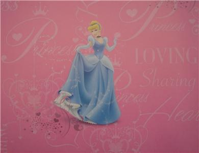 Disney Princess Cinderella Gift Wrap Party 18 Sheets Wrapping Paper