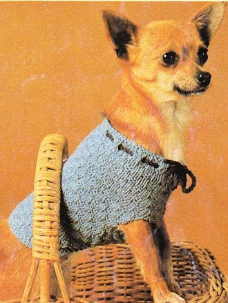 Talking Tails - Easy Dog Sweaters - How to Knit a Dog Sweater