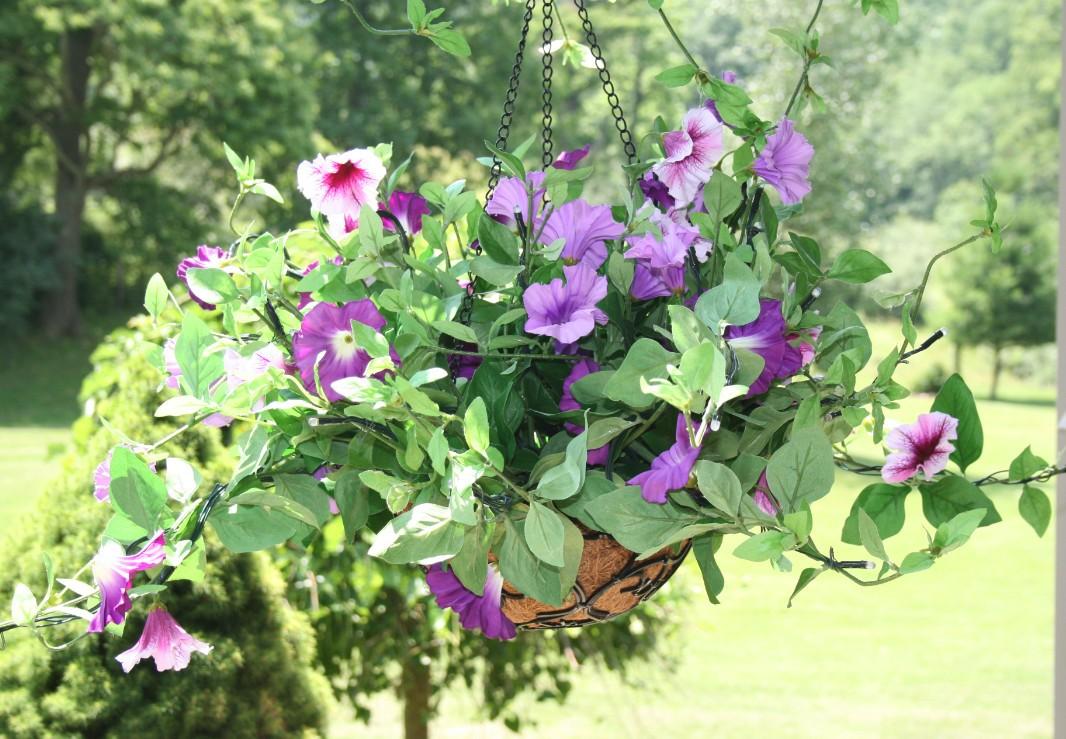 Hanging Flower Baskets With Lights : Bethlehem lights battery operated petunia hanging flower