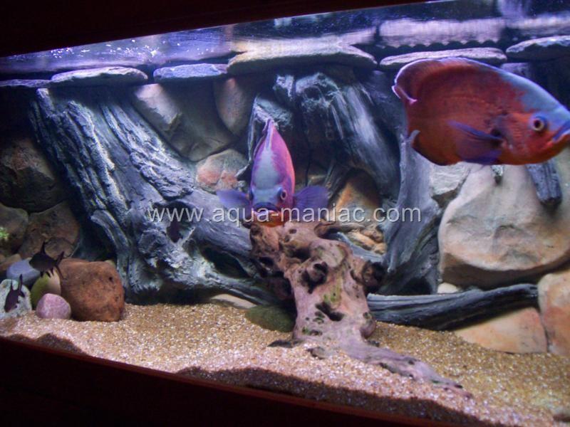 Aquarium backgrounds ebay uk aquarium backgrounds for for Ebay 3d wallpaper
