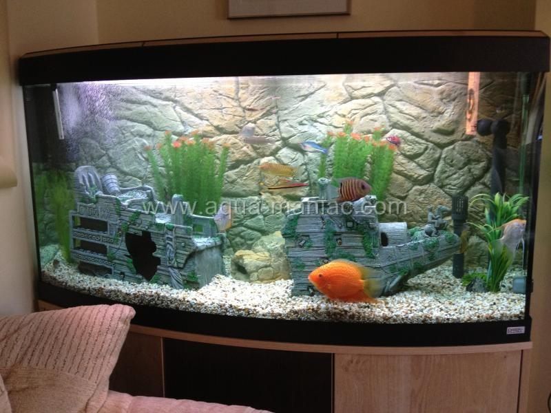 3d thin rock malawi background for tank aquarium for 3d fish tank