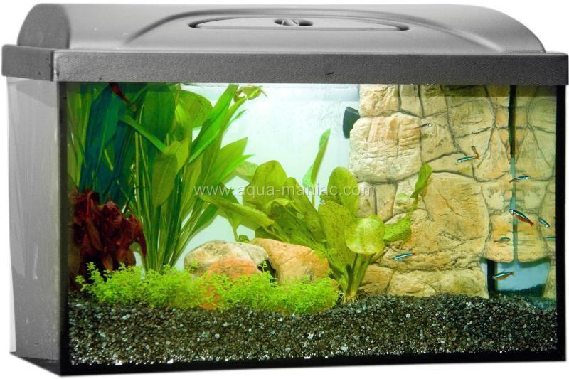 Aquarium fish tank filter and heater cover 3d rock stone for Fish tank with filter and heater