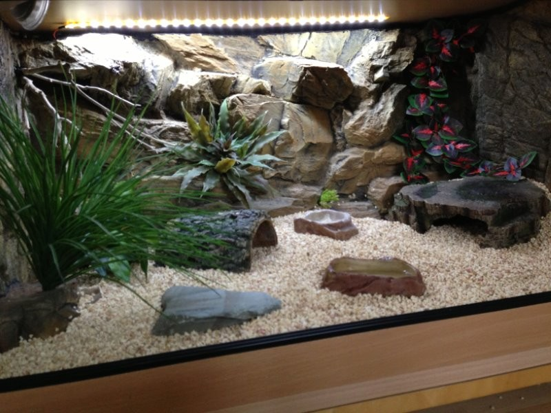 Задняя фон аквариума своими руками
