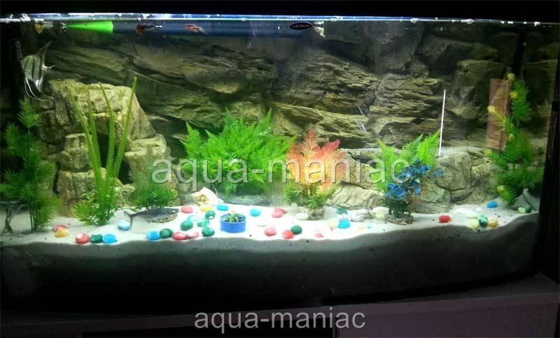 Aquarium backgrounds uk pangea 3d aquarium background for 3d fish tank