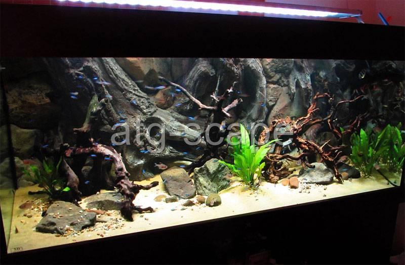 Aquarium background 3d amazon for 30g tank size 36x16 for Amazon aquarium fish